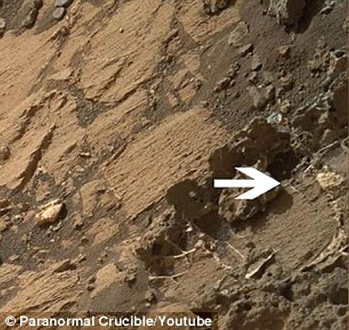 局部放大图像,外星人狂热爱好者表示,这个神秘结构是火星表面上某种生物的骨骼残骸。