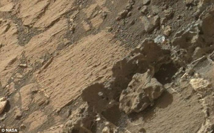 """网友指出,图中的""""火星生命""""骨骼残骸非常类似于人类骨骼。"""