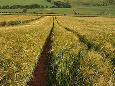 苏格兰农业出现的年代有望追溯到6000年前
