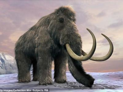 科学家称复活猛犸象或许能将冰原重新变回草原