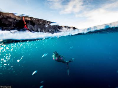 岩浆身后追赶 美国夏威夷女子Alison Teal成为首位在火山爆发下滑浪的人