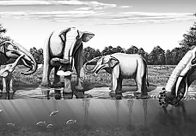 透过古生物看气候变化