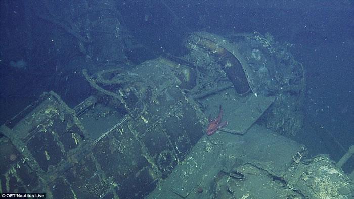国加州外海发现独立号航空母舰 USS Independence CVL 22 残骸