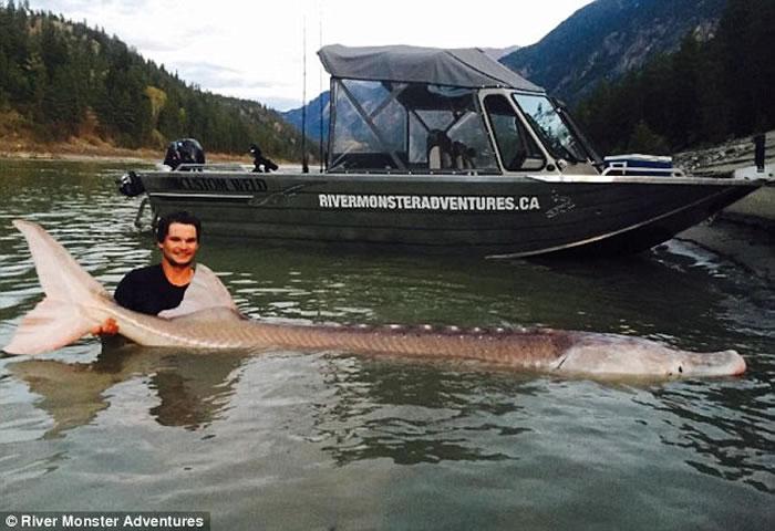 """加拿大19岁男孩捕捉到村民流传40年的传奇""""粉红猪鼻子""""鲟鱼"""