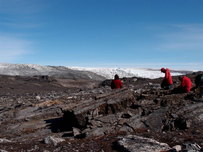 格陵兰岛岩石中发现地球最古老化石——37亿年前叠层石
