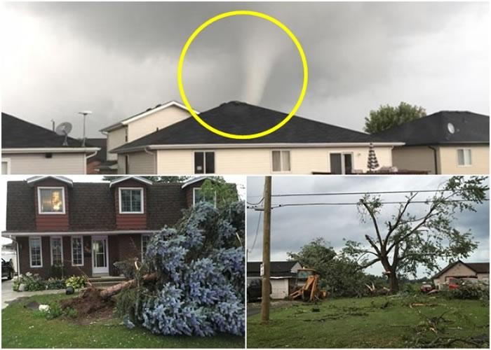 龙卷风吹毁房屋和大树。
