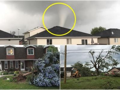 龙卷风吹袭加拿大安大略省南部 大量房屋及树木被吹倒