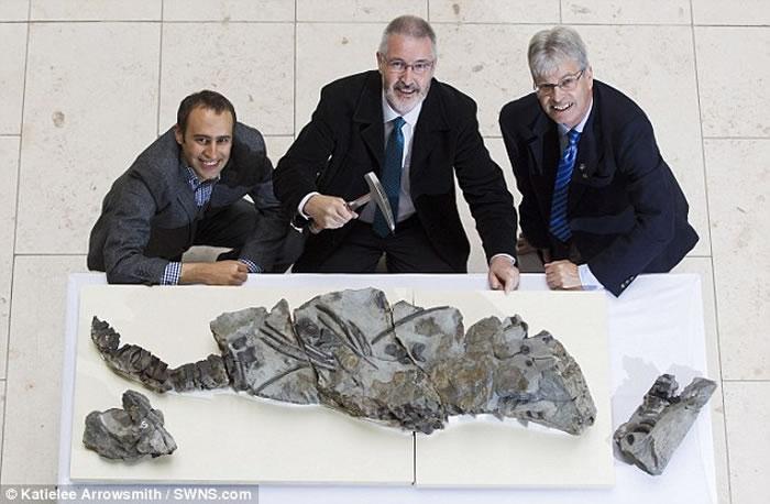 苏格兰斯凯岛海滩发现1.7亿年前远古掠食性动物鱼龙骨骼化石
