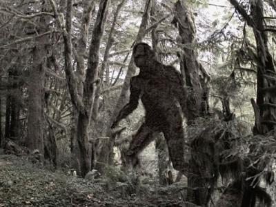 传说中的神秘生物现身?英国男子声称在威尔斯树林中遇到大脚怪