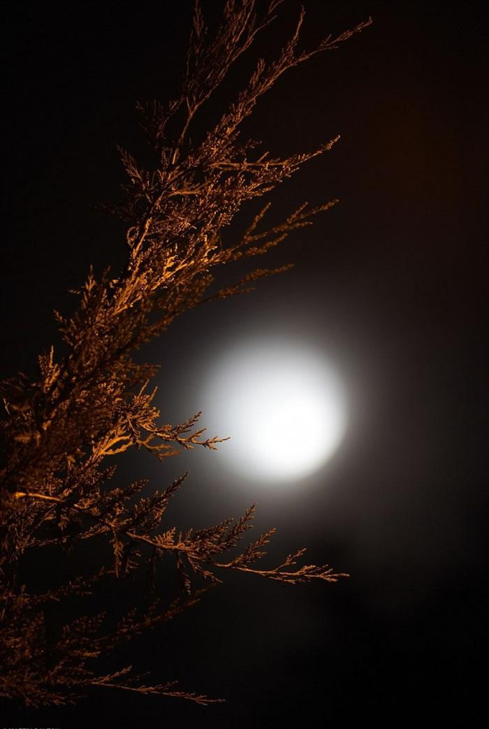 要再看到同样的罕有月色要等待数年之久。