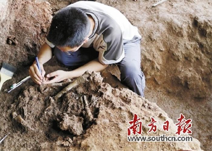 古人类人骨化石发掘现场。 省考古所供图