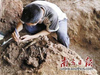 广东英德青塘遗址黄门岩1号洞发现距今一万多年、保存完整的人类骨架化石