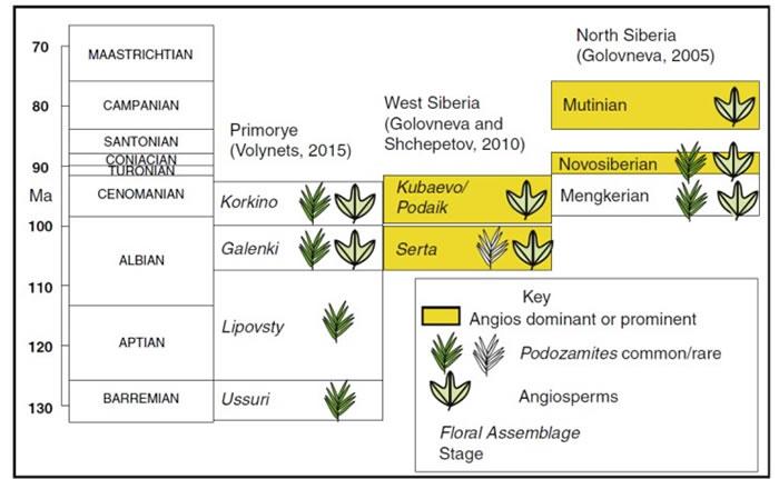 西伯利亚地区白垩纪中期苏铁杉和被子植物演替示意图