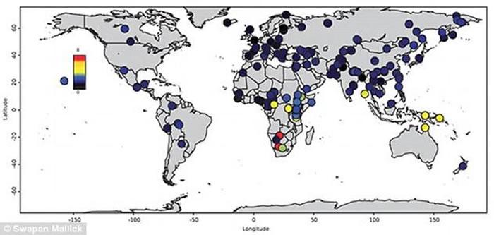 哈佛医学院研究人员分析了来自全球142个不同种群的300种基因组。这些种群包括非洲大陆的20个部落种族以及世界其它地方的一些相对较小的种族
