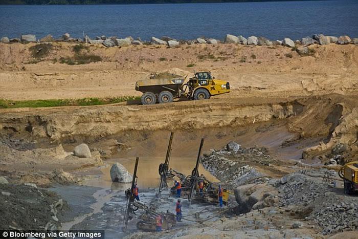 巴西工地爆破工程后发现重400公斤超级大森蚺 可能打破世界纪录