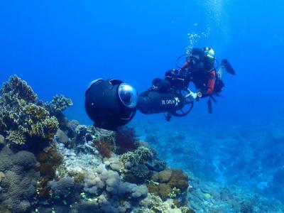 Google街景服务首度潜进台湾海底世界