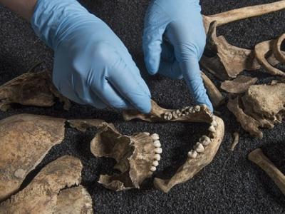 考古惊雷:英国罗马时代墓地发现中国人骸骨