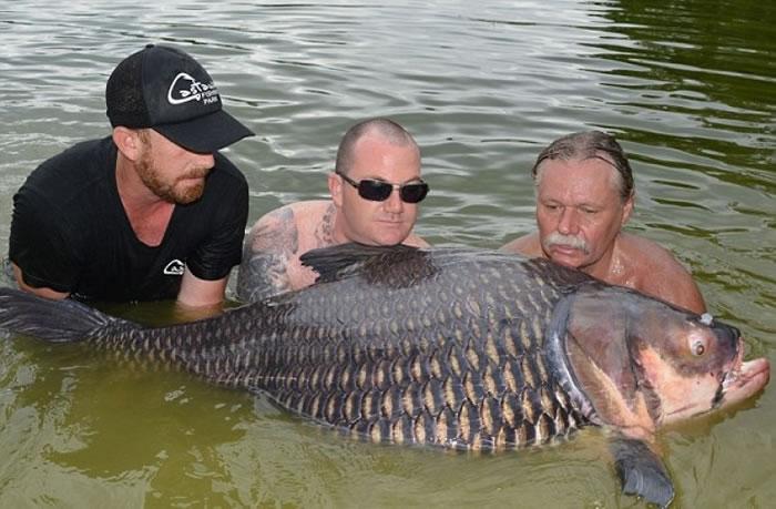 韦勃(右)需要钓友协助,才能把大鲤鱼托起。