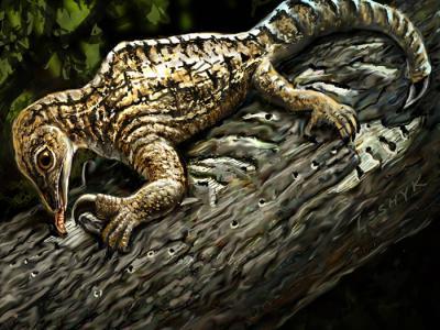 """2亿年前变色龙一样的爬行动物""""镰龙""""有难以置信的独特前肢"""