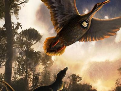 迄今最古老鸟类发声器官:南极洲发现6800万年前维加鸟鸣管化石残骸