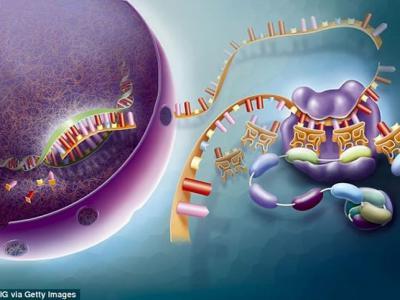 最新研究认为最早的生命形成处方中应该还包括一种关键因素——增稠剂