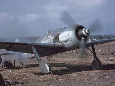 二战秘闻?纳粹战机FW 190埋土耳其中部基地