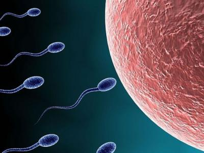 英国科学家研新化合物 男性口服避孕药可望面世