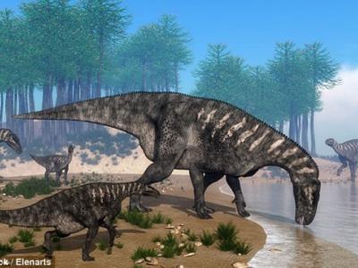 英国南部海滩发现1.3亿年前白垩纪早期恐龙头骨软组织化石