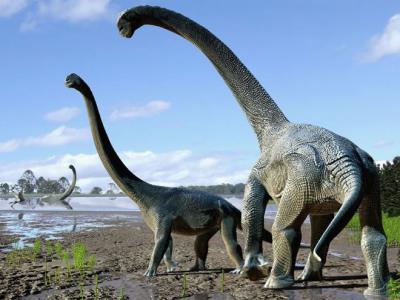泰坦巨龙为了抵达澳洲可能跨越整个南极大陆