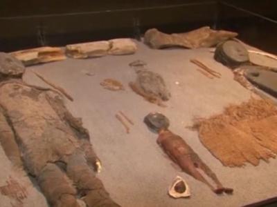 智利博物馆世界最古老木乃伊受到细菌侵蚀将化成一堆烂泥