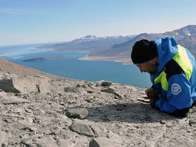 2.52亿年前地球最大灭绝事件后高纬度地区的生态系统是如何恢复的