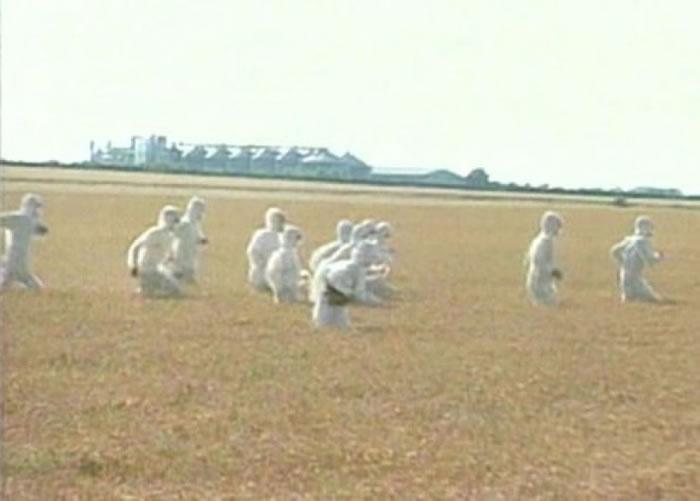 英国科学家申请试验种植基因改造小麦