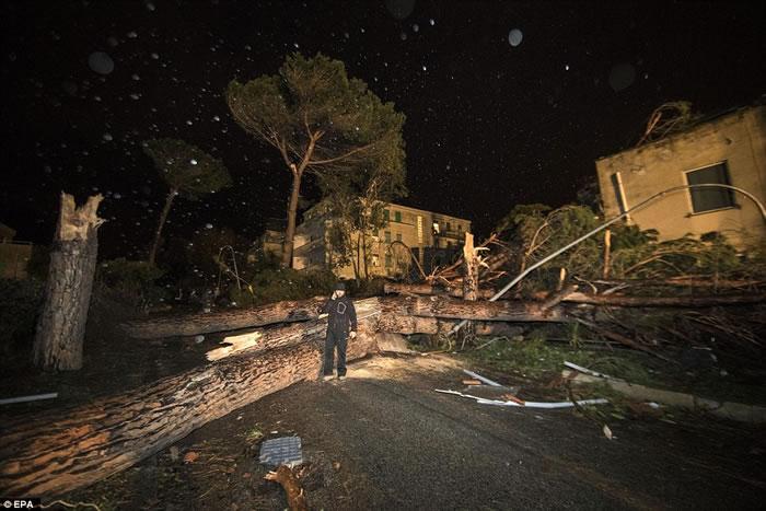 龙卷风肆虐意大利首都罗马西部小镇