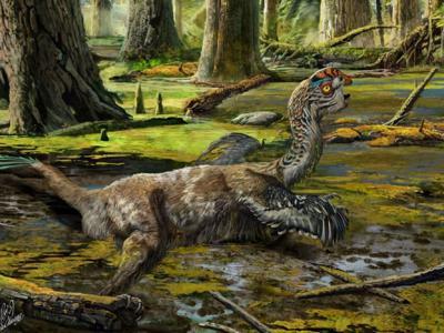 中国赣州南雄组晚白垩世第6个描述的新窃蛋龙科恐龙——泥潭通天龙