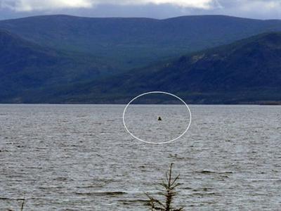渔网嘶咬出破洞:俄罗斯探险家称水怪疑似再现西伯利亚拉本克尔湖