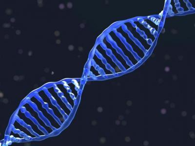 外国新技术成功修复基因 助延寿或治顽疾