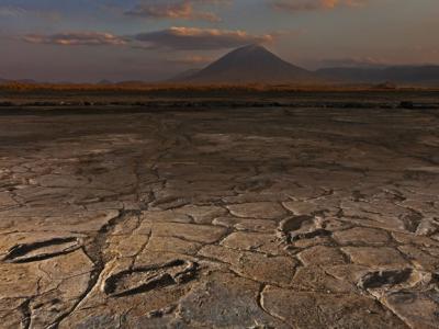 坦桑尼亚伦盖火山阴影下的泥滩里发现万年前古人类的足迹化石