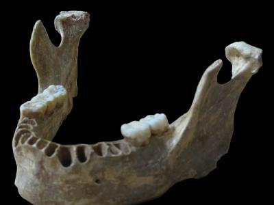 中国学者付巧妹探寻古人类杂交之谜