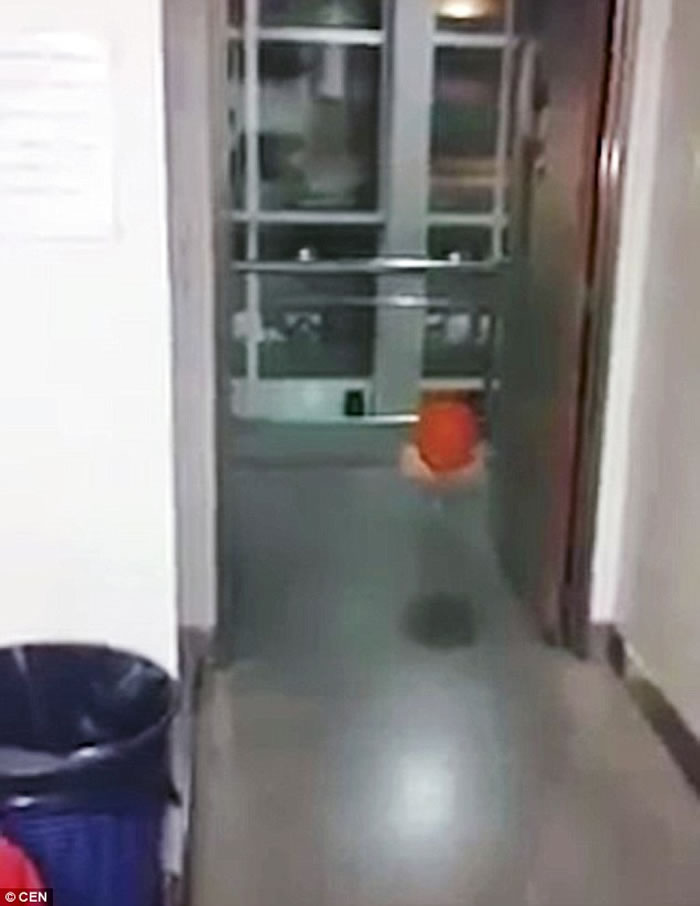 阿根廷医院发生怀疑灵异事件:恐怖气球跟着医院职员懂得转弯