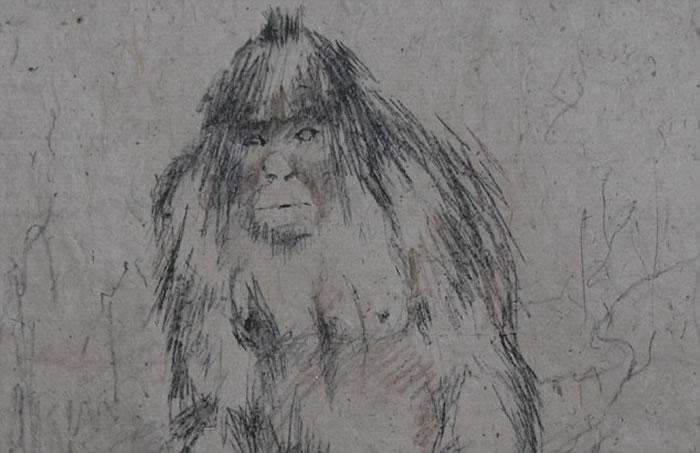 """""""喜马拉雅山雪人""""是尼泊尔传说生物。"""