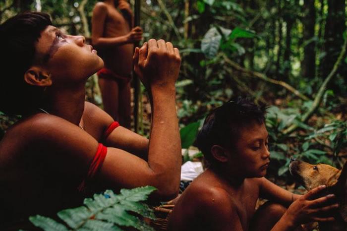 一群亚诺玛米人在森林中打猎。他们和周遭环境的互动非常微妙,甚至不留下一点人类足迹。 PHOTOGRAPH BY MICHAEL NICHOLS, NATIONA