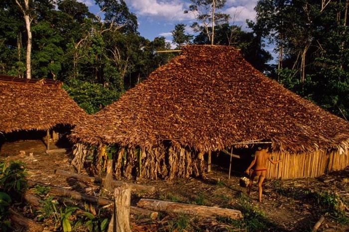 亚马逊雨林深处的亚诺玛米公社。村民们在此进行游耕、火耕。 PHOTOGRAPH BY MICHAEL NICHOLS, NATIONAL GEOGRAPHIC
