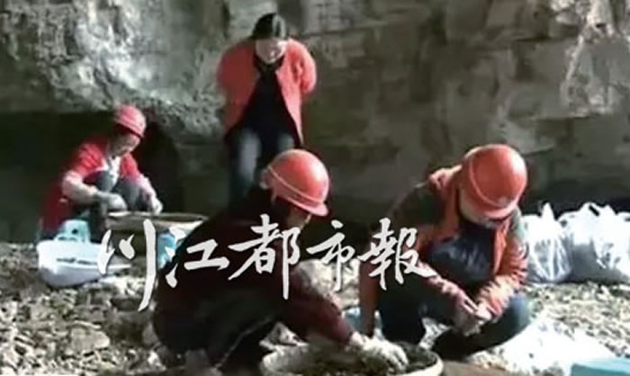 清理的过程中发现石制品