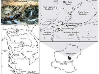 泰国的新近纪轭齿象化石阐明乳齿象类在东南亚的进化和扩散