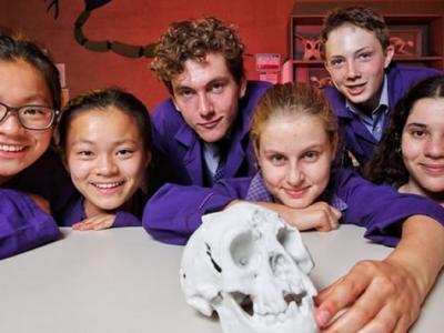 澳大利亚墨尔本卫斯理学院的学生成功使用3D打印技术复制出史前人类哈比人头盖骨