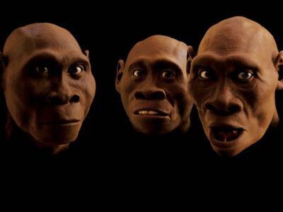 第一批走出非洲的原始人:追踪脑容量不及现代人一半的格鲁吉亚德马尼西古人类