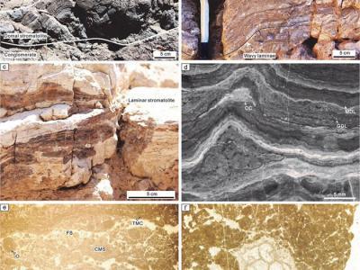 泥盆纪末生物大灭绝之后全球微生物碳酸盐岩复苏
