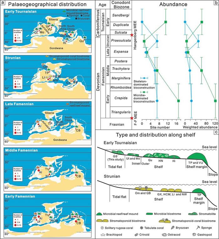 泥盆纪法门期-石炭纪杜内早期骨架生物为主和微生物为主的生物建造的类型(a)、丰度(b)和古地理分布(a, c)图