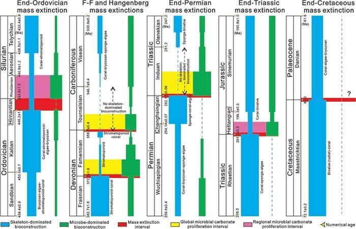 """显生宙Hangenberg和""""五次""""生物大灭绝事件转折期间骨架生物为主和微生物为主的生物建造的相对丰度变化图"""