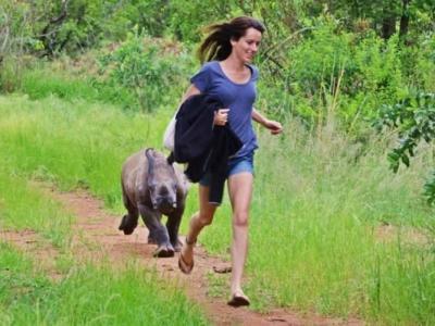 南非白犀牛遗孤食沙维生 获救与义工成好友